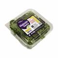 Salata Maskolin Adet