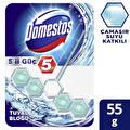 Domestos 5'li Güç Çamaşır Suyu Katkılı Tuvalet Blok
