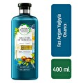 Herbal Essences Argan Yağı Şampuan 400 ml