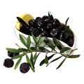 Sude Gemlik Yağlı Siyah Zeytin 261- 320 kg