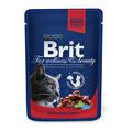 Brit Sığır Etli Kedi Poşet Kedi Maması 100 g