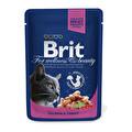 Brit Somonlu Poşet Kedi Maması 100 g