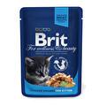 Brit Tavuklu Yavru Poşet Kedi Maması 100 g