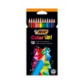 BİC Color Up Kuru Boya Kalemi 12 Renk