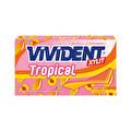Vivident Tropikal Sakız Şeftali ve Mango Aromalı 26 g