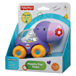 Fisher Price Poppity Araçlar