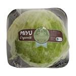 Atom Salata Organik