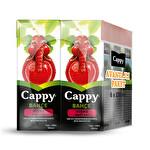 Cappy Bahçe Vişne Nektarı 6*200 ml