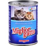 Miglior Gatto Balıklı Kedi Maması 405 g