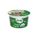 Pınar Doğal Yoğurt 600 g