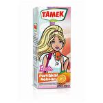 Tamek Portakal Nektarı 200 ml (TP)