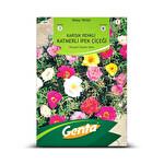 Genta Karışık Renkli Katmerli İpek Çiçeği