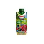 Tamek Zinde Vitaminli Karışık Meyveli İçecek Kırmızı 330 ml