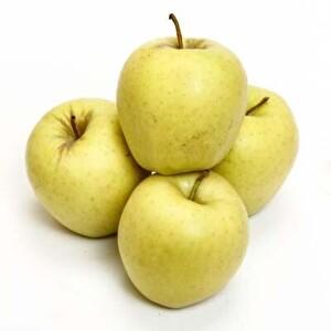Elma Golden Organik